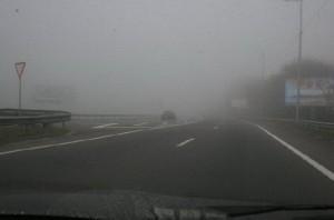 движение во время тумана